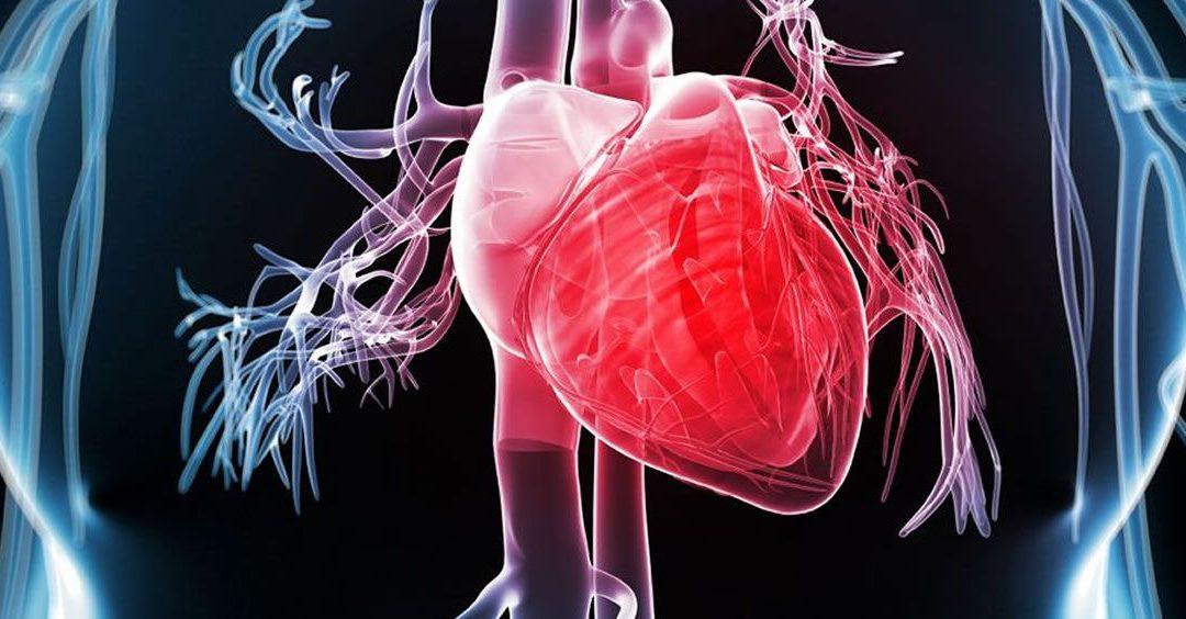 Cinco consejos para tener un corazón sano